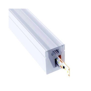 Néon LED blanc 6mm plat 24V